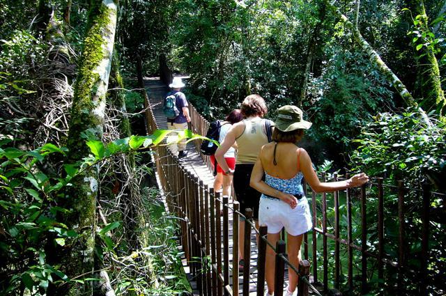 Com-o-ecoturismo-é-possível-aprender-novas-maneiras-de-se-conviver-com-a-natureza