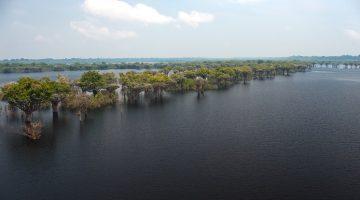 Manaus, a capital do Amazonas, é vista como a porta de entrada da Floresta Amazônica, o que faz dela um atrativo turístico para o mundo inteiro. Próximo a cidade já é possível observar alguns encantos naturais da Amazônia, como as ilhas Anavilhanas. Segundo maior arquipélago fluvial do mundo com 400 ilhas em 100 km de extensão. Em junho, na época das cheias, muitas ilhas ficam inundadas e o arquipélago muda de aspecto dependendo da quantidade de chuvas. Manaus (AM). Foto: David Rego Jr. *** Local Caption *** * Prazo indeterminado