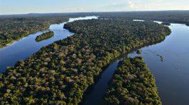 Vista aérea do Parque Nacional do Juruena © Adriano Gambarini/WWF-Brasil